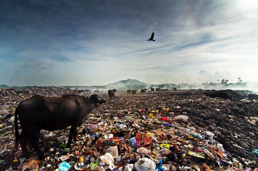 I danni dell'inquinamento sulla nostra salute